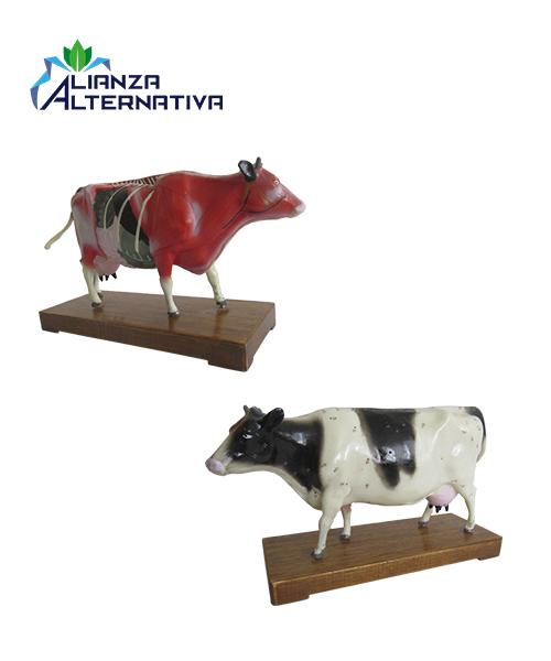 modelo-de-acupuntura-plástico-vaca