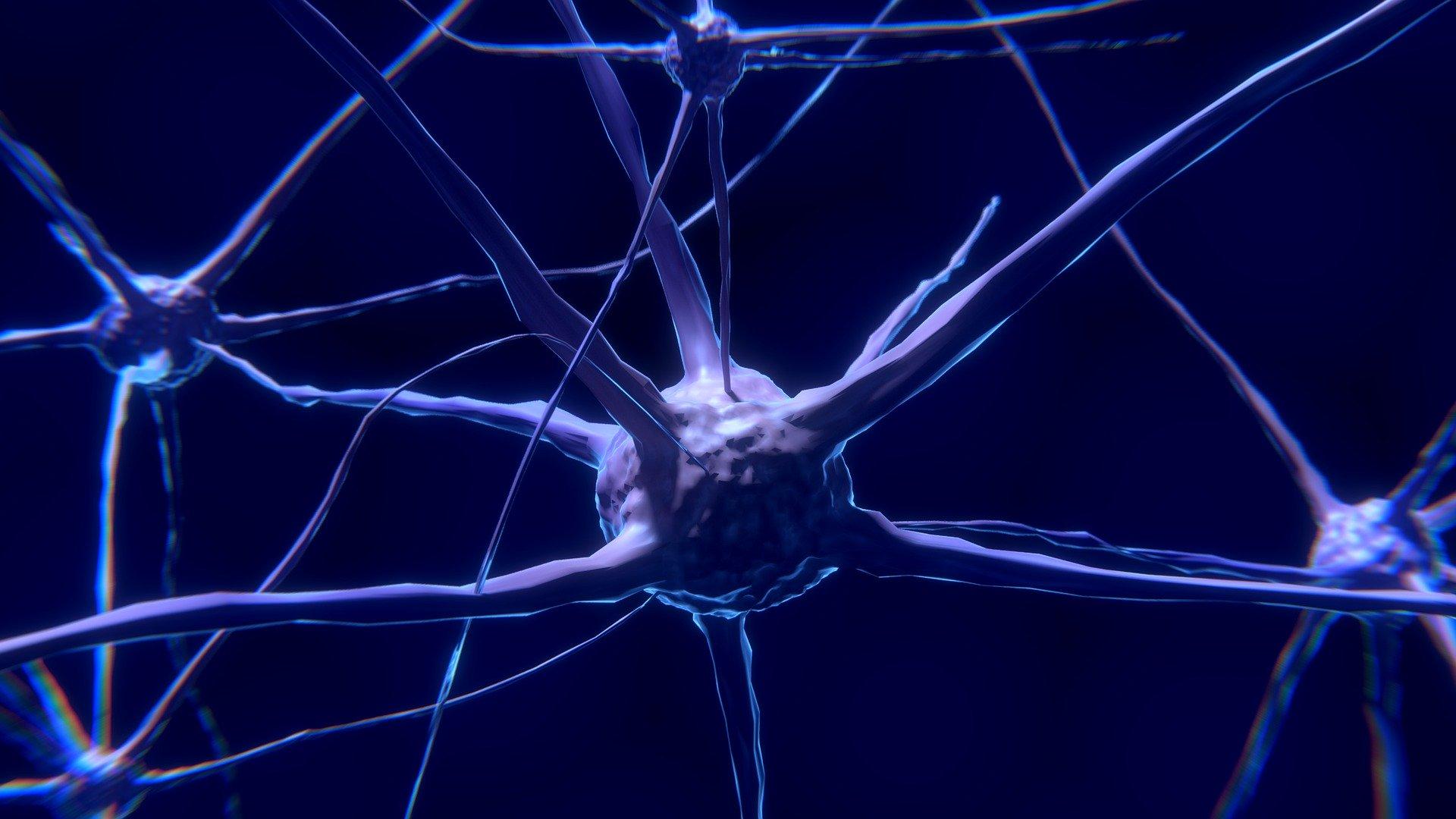 puntos de terapia neural